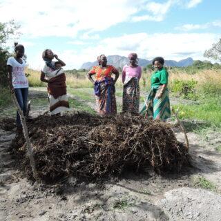 Mosambikissa ilmastonmuutoksen seurauksiin varaudutaan kehittämällä viljelymenetelmiä