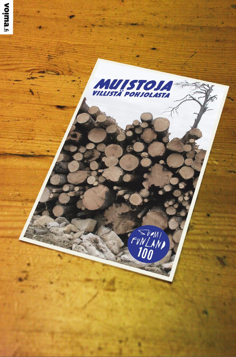 """""""Suomalaisten erityinen luontosuhde"""", """"Suomi elää metsästä"""". Siinä se nyt sitten makaa pinossa, sielunmaisemamme."""