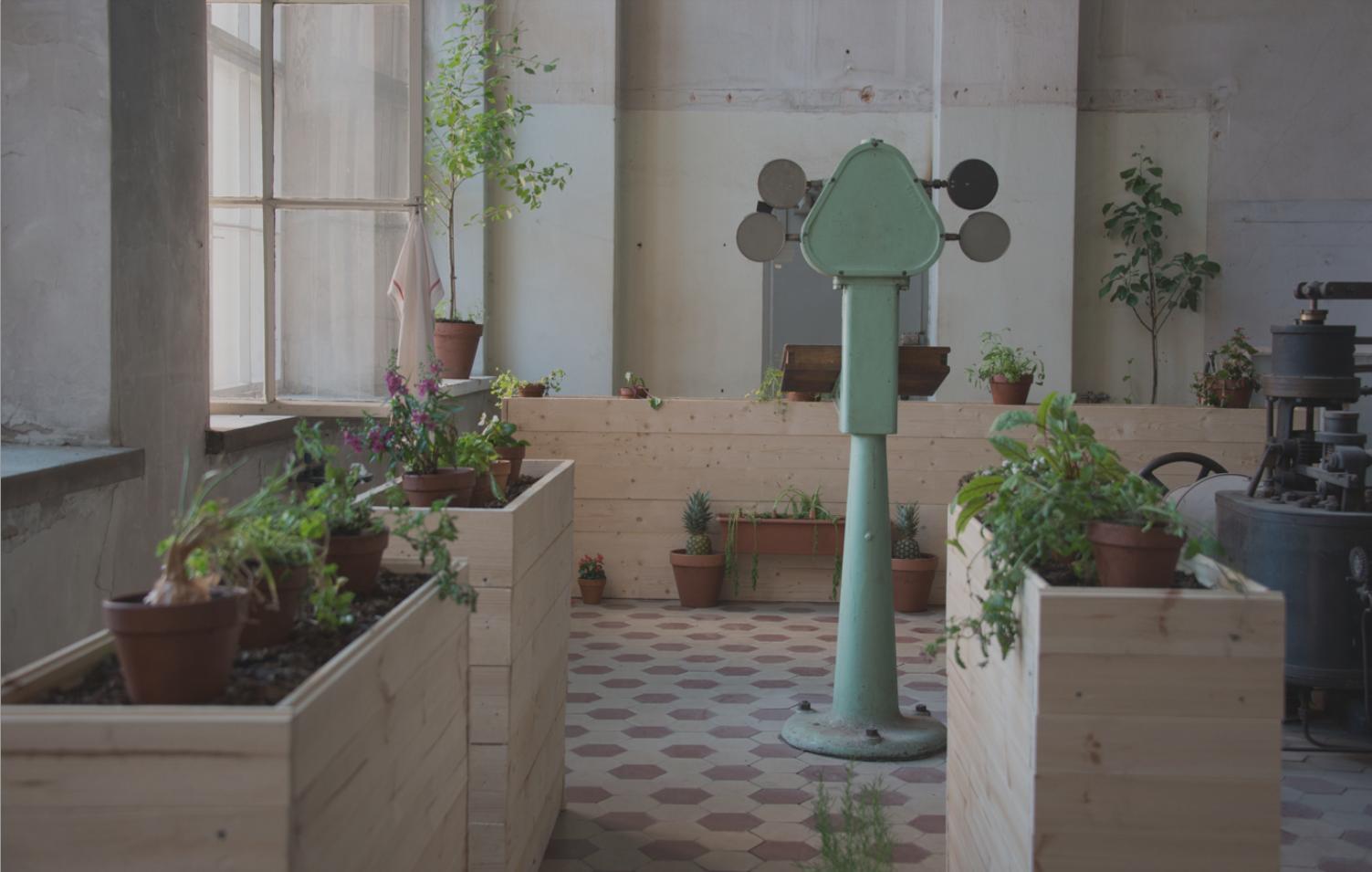 Erno-Erik Raitasen installaatio Kuoleman puutarha nähtiin vuonna 2016 Saatanan kesänäyttelyssä. Teoksen raaka-aineina käytettiin muun muassa kompostoitua biojätettä ja ulostetta, kastematoja, pääasiassa löydettyjä kasveja.