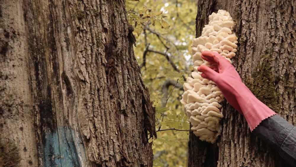 Sovittelu-videoteoksessa ihminen tarkastelee luonnon ihmeitä niistä vieraantuneena.