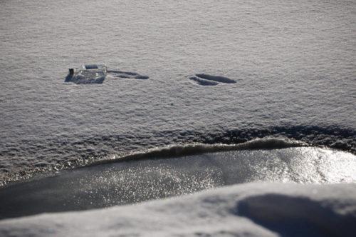 Lumi paljastaa