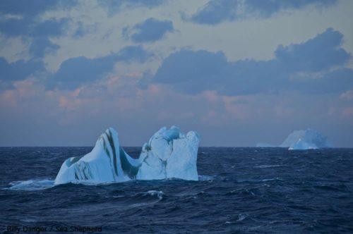 Jäähyväiset Antarcticalle