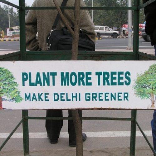 Vihreä Delhi