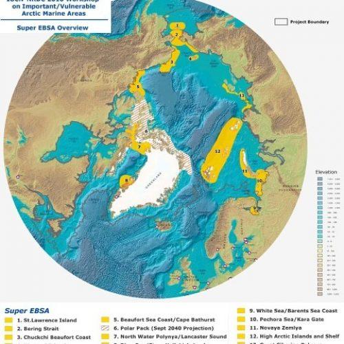 Arktisia aarteita