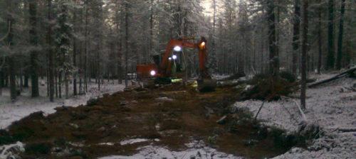 Metsähallitus valmistelee hakkuita vuoden retkeilyalueella