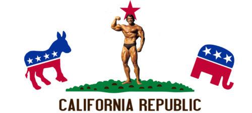 Miljoonat eivät tuoneet kuvernöörin paikkaa Kaliforniassa