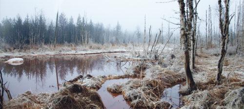 Talvivaara – Tämä ei ole lunta
