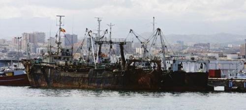 Laiton kalastus & hupenevat kalakannat
