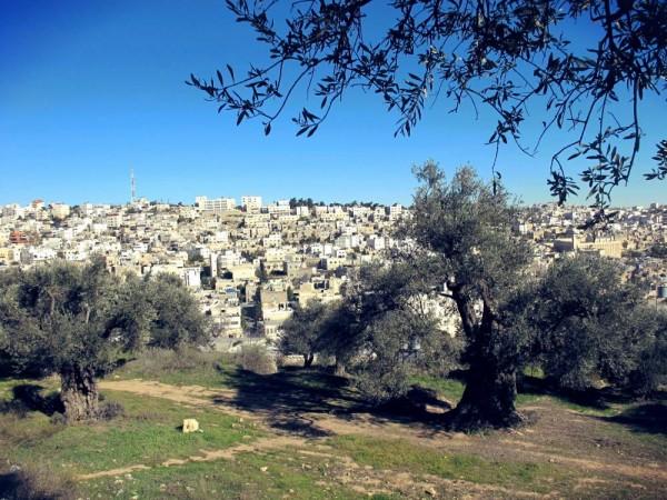 Hebronin kaupunki, jossa Palestiinan miehitys näkyy kaikkien asukkaiden arjessa.