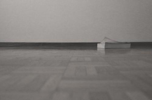 Horizontal_Yoshi_Omori