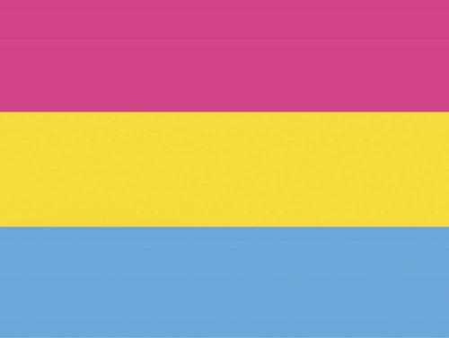 Panseksuaalilippu