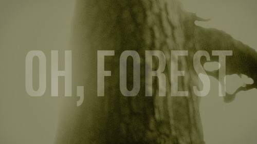 Forest_event_FB