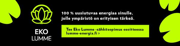 Lumme Energia