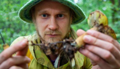 Joko ajattelit aloittaa sienestämisen? Tuomas Lilleberg auttaa sinut alkuun sienimetsiin vieville poluille