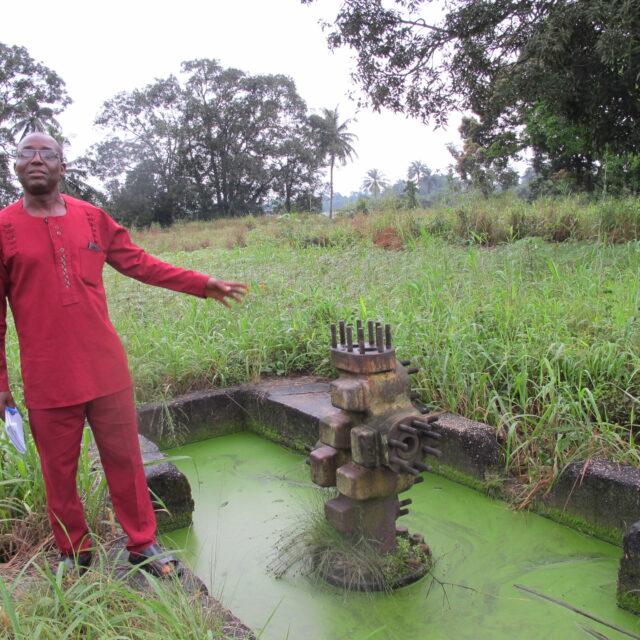 Voima 20 vuotta sitten: hirttäminen ja happoon upottaminen eivät tappaneet Saro-Wiwaa