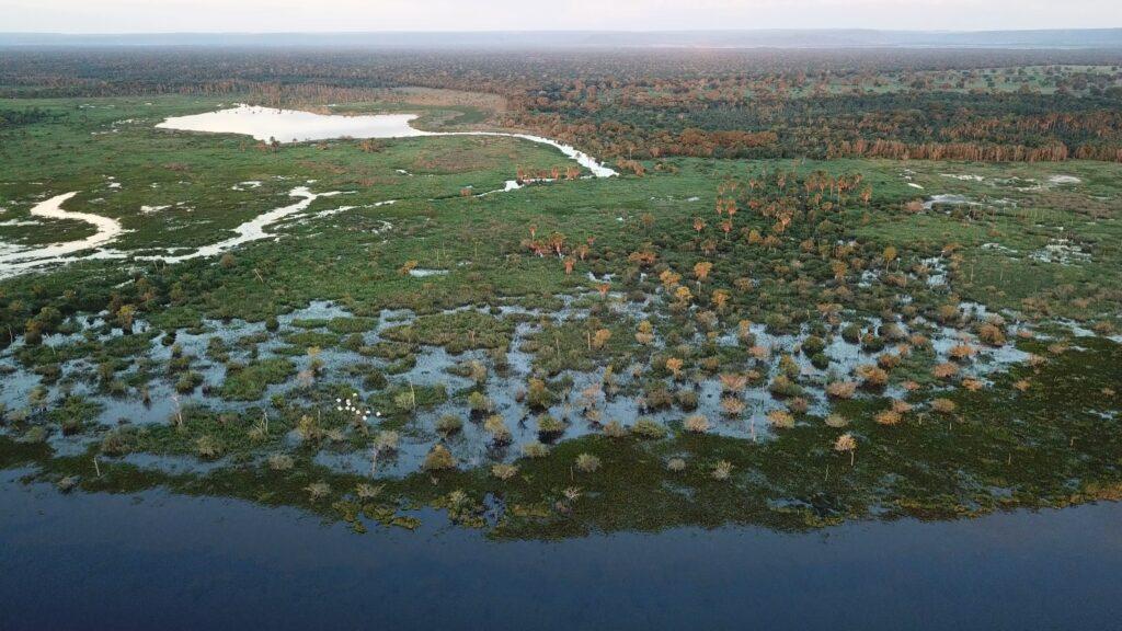 Pantanal, Brasilia