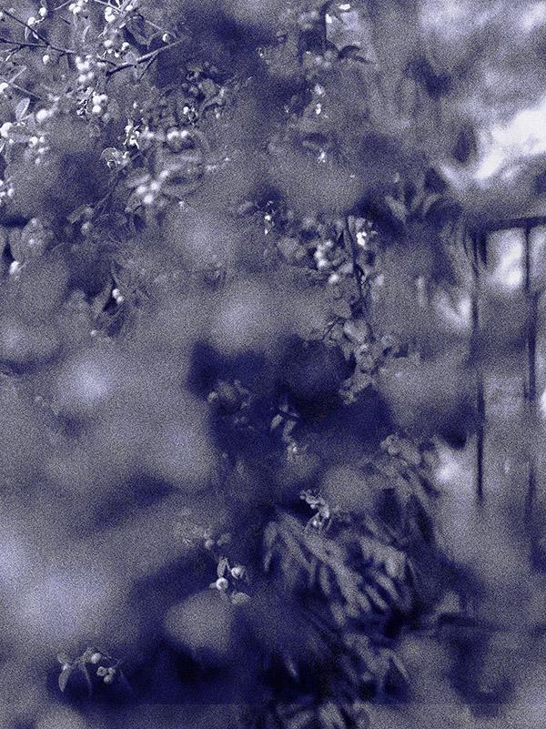 Hanna Råst: Aftermath